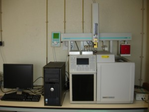 Gas chromatograph, model CP-3800 from VARIAN (Palo Alto, CA, USA).