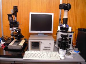 Polarising Optical Microscope - Identification of Liquid Crystal Phases